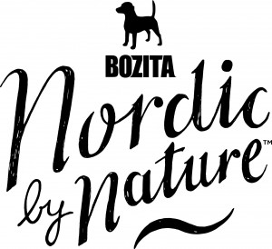 Boziza